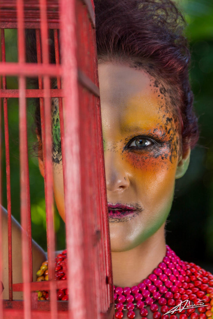 Fantasy photography woman with colorfull make up with cage.