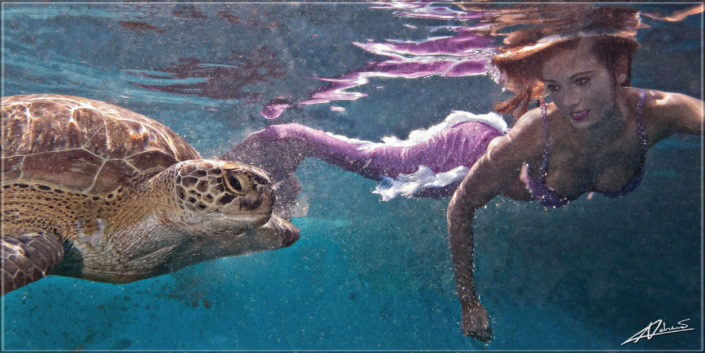 Underwater portrait mermaid and sea turtle.